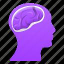 brain, business, head, person