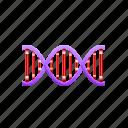 dna, man, medical, molecule, woman