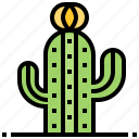 cactus, desert, plant, spiny, succulents icon