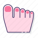 anatomy, fingers, nails, toes icon