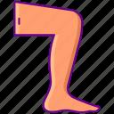 feet, thigh, leg, foot icon