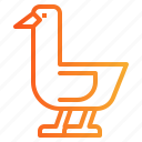 animal, goose, poultry, wildlife icon