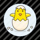 animal, baby, birds, brood, chick, egg, fauna, hatching, hatchling, vertebrate icon