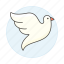 animal, birds, dove, fauna, flying, pigeon, vertebrate, white icon