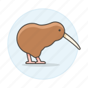 animal, bird, birds, brown, demonym, fauna, flightless, kiwi, new, vertebrate, zealand icon