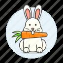 animal, carrot, eating, fauna, herbivore, mamals, rabbit, rodent, vertebrate, white icon