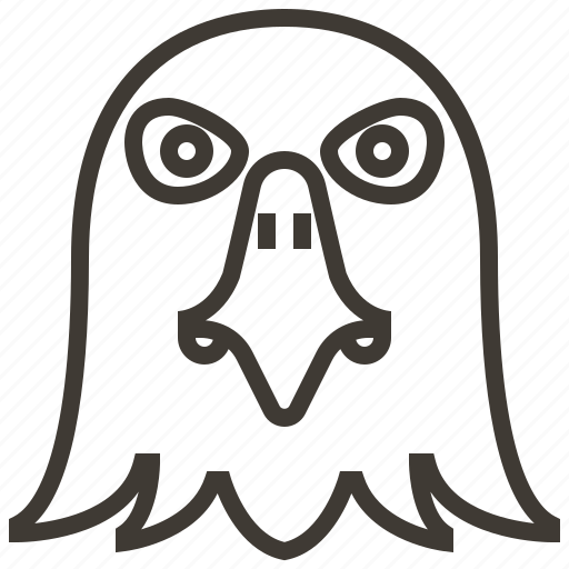 animal, bird, eagle, face, hawk, head icon