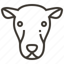 animal, face, head, sheep icon