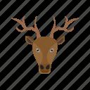 animal, deer, ears, face, faces, mammal, wildlife icon