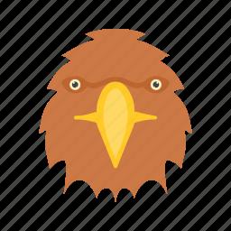 bird, eagle, falcon, flight, flying, sky, wing icon
