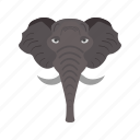 african, animal, baby, big, elephant, safari, trunk icon