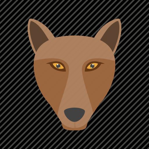 animal, fox, jungle, mammals, reynard, snow, wild icon