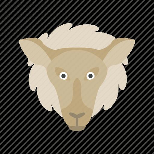 face, farm, lamb, lambs, livestock, sheep, white icon