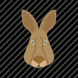 cute, face, grass, jump, jungle, rabbit, white icon
