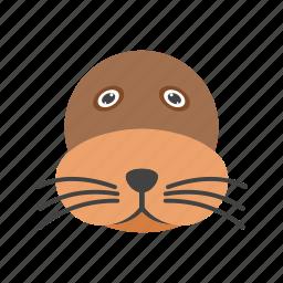 animal, face, lion, mammal, sea, water, wildlife icon