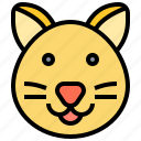 cat, feline, kitten, mammal, pet icon