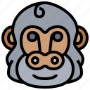 animal, gorilla, mammal, primate, wildlife icon