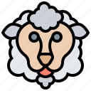 domestic, lamb, pasture, sheep, wool icon