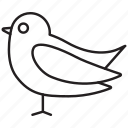 bird, birdie, canary, canary-bird, canary-finch, sparrow, tweet icon
