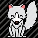 animal, arctic, fox, silver