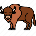 animal, bison, buffalo, bull icon