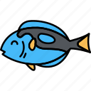 animal, blue, fish, tang icon