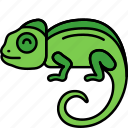 animal, chameleon, lizard, reptile icon