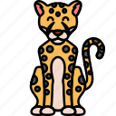 animal, big, cat, cheetah icon
