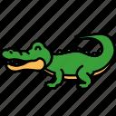 aligator, animal, crocodile, reptile