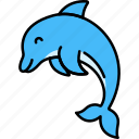 animal, dolphin, water, mammal