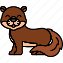 otter, animal, water, mammal