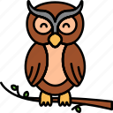 bird, owl, animal, night