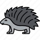 animal, porcupine, spike, wild icon