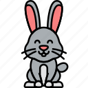animal, bunny, easter, rabbit