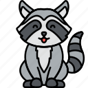 animal, nature, raccoon, racoon icon