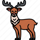 animal, christmas, reindeer, antlers