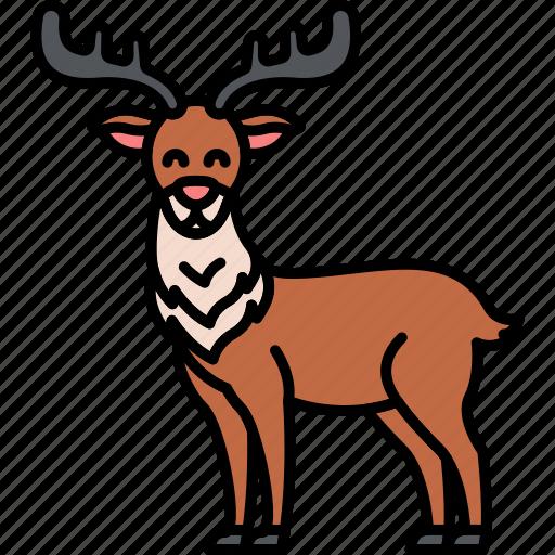 animal, antlers, christmas, reindeer icon