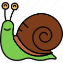 shell, slow, snail, animal