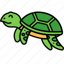 animal, tortoise, turtle, reptile
