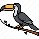 animal, beak, bird, toucan icon
