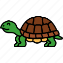 animal, reptile, tortoise, turtle icon