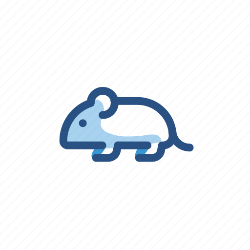 animal, mouse, rat, rodent icon