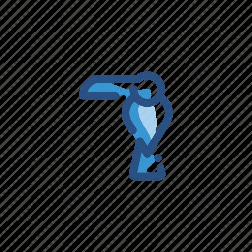 animal, bird, toucan icon