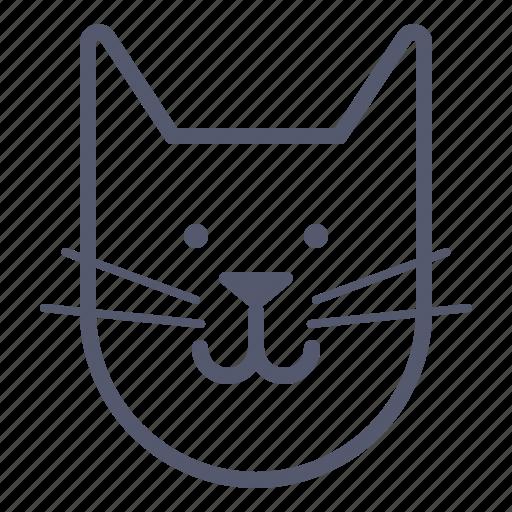 cat, domestic, friend, lover, pet icon