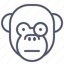 experiment, face, glasses, monkey, science, smile, study