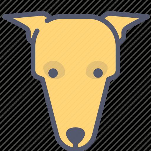 dog, help, hunter, hunting, run, speed icon