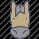 horse, ride, speed, trip, war