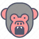 angry, attack, danger, face, monkey, smile