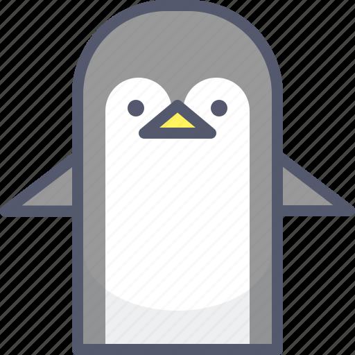 Antarctica, ice, ocean, pigeon, swim, zoo icon - Download on Iconfinder