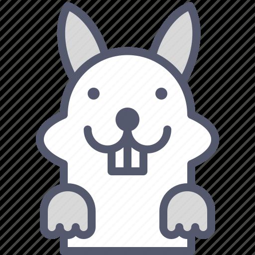 Field, happy, jump, rabbit, run icon - Download on Iconfinder